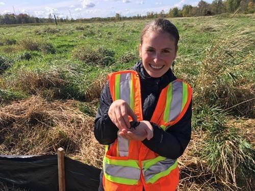 Natalie Glancy, agente de l'environnement de la CCN, a trouvé une tortue serpentine en train d'éclore dans la zone humide.