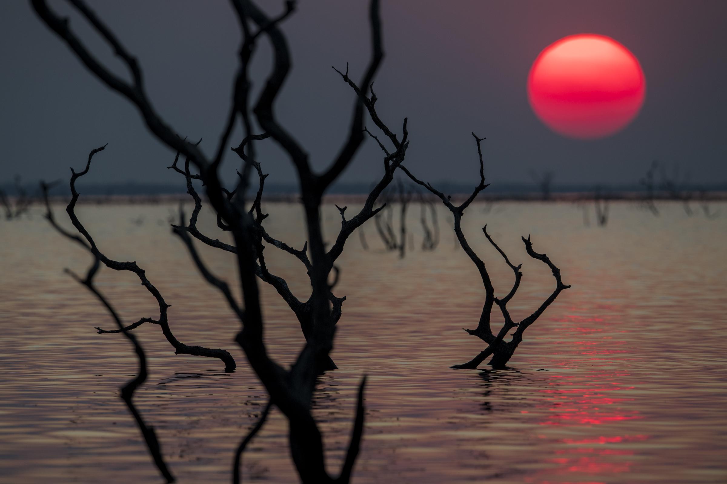 Neil Ever Osborne, After sunset on Itezhi-Tezhi Lake, October 10th, 2018