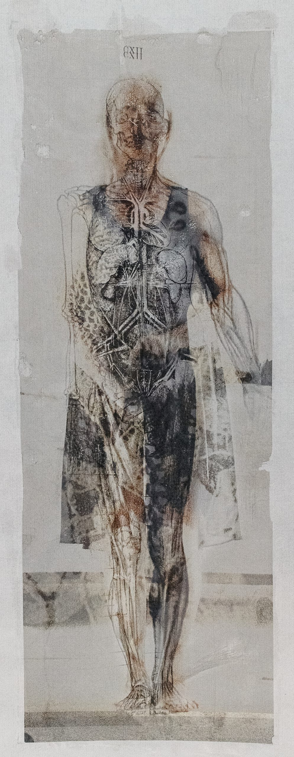 Peggy Taylor Reid, Internal Workings, 2019. Image transfer on washi paper.