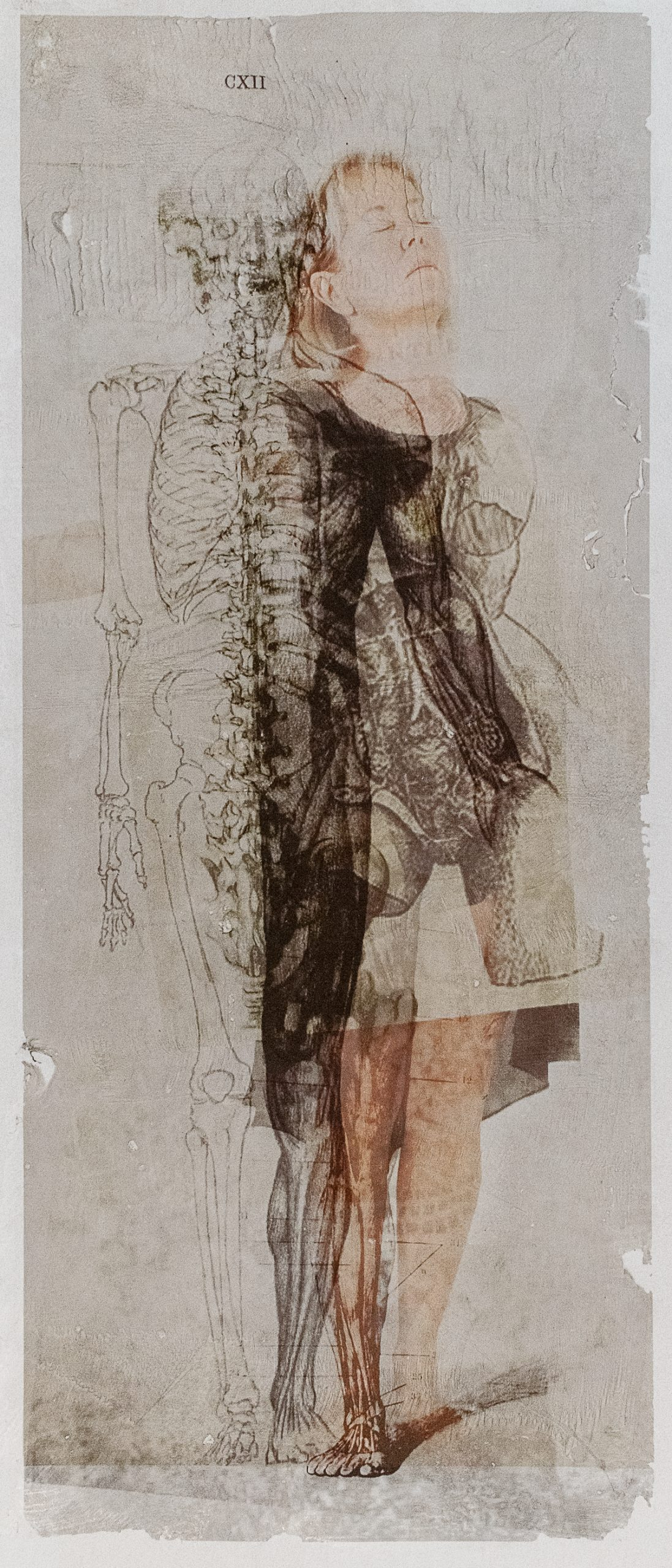 Peggy Taylor Reid, Leaning In, 2019. Image transfer on washi paper.