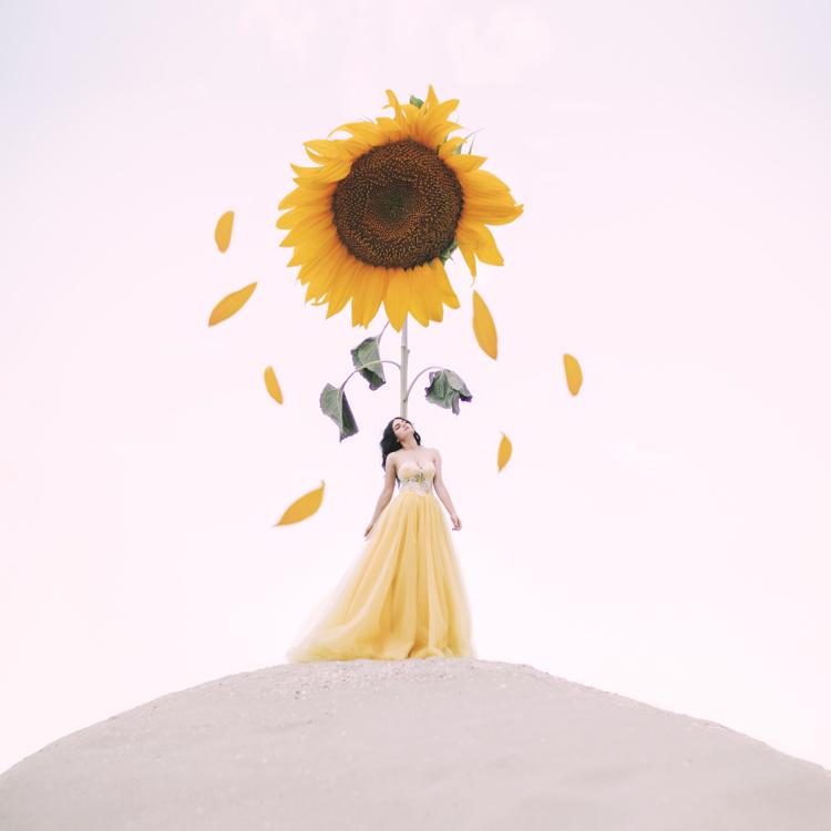 Jovana Rikalo, Rise and Fall, 2019