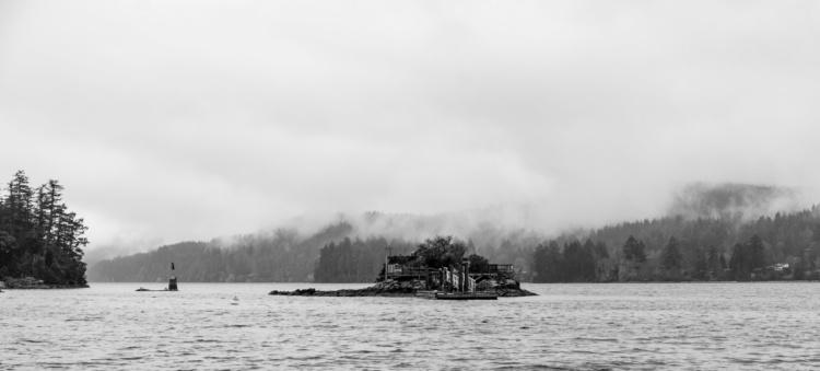 Diana Pelenur, Salt Spring Island, 2019