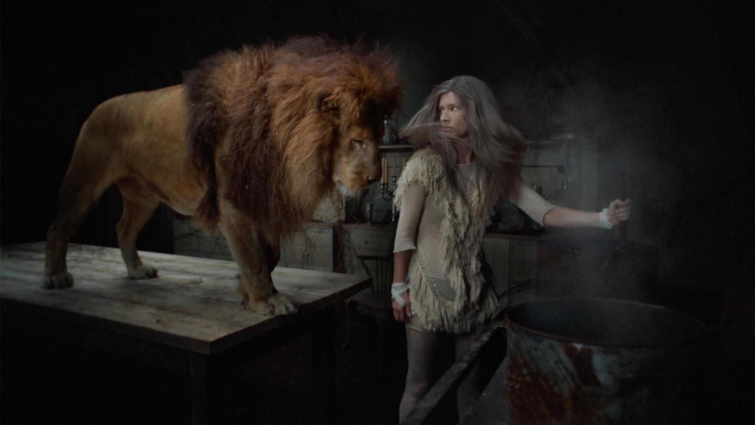 Kurt Stallaert, Lion, 2019