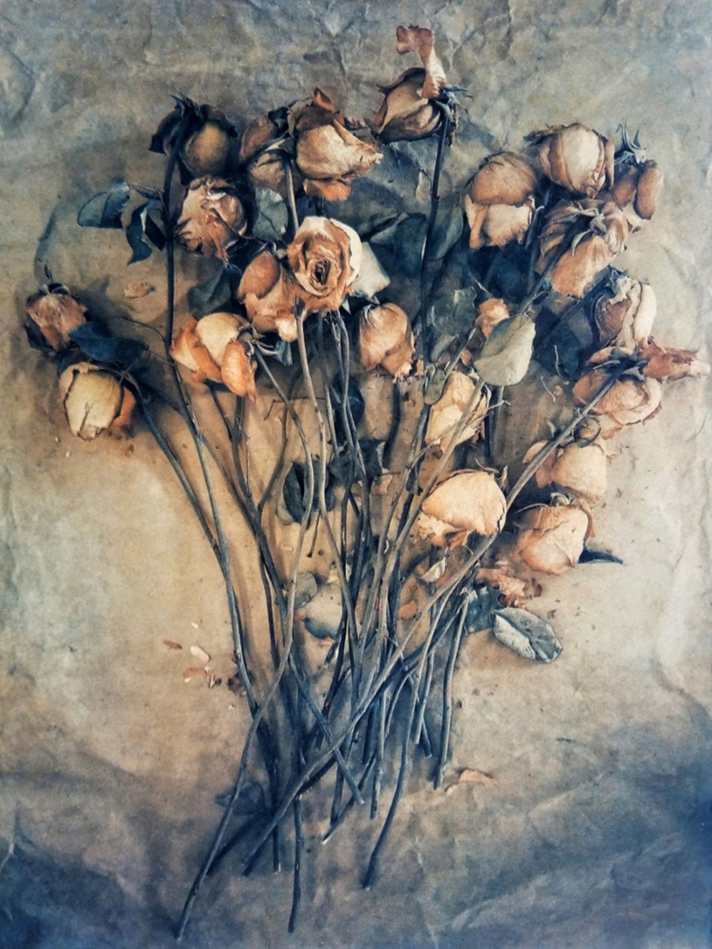 Diana H. Bloomfield, Spent Roses, 2018. Courtesy of the artist.