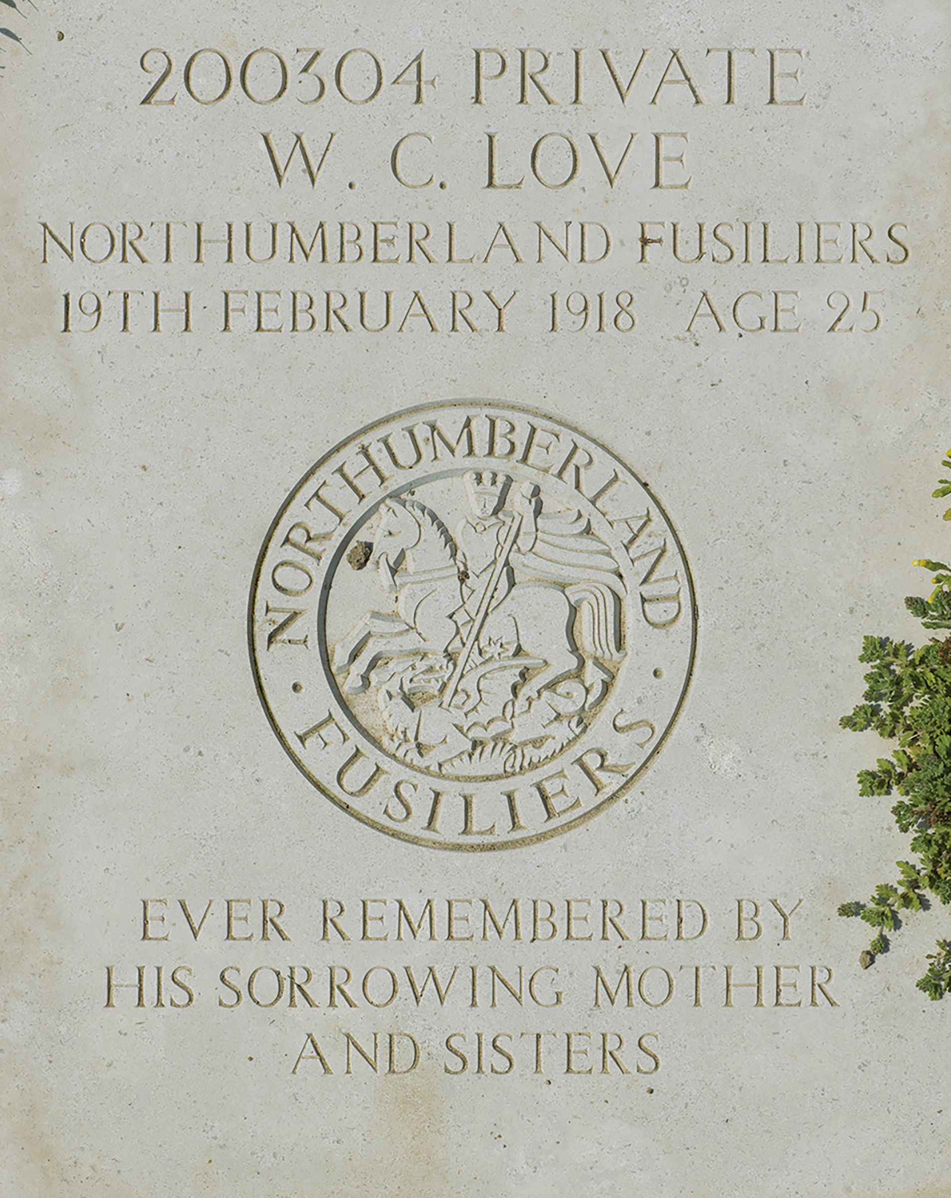 Daniel Alexander, WWI headstone, Private W. C. Love: Wimereux Communal Cemetery, France, 2013. Courtesy of the artist.