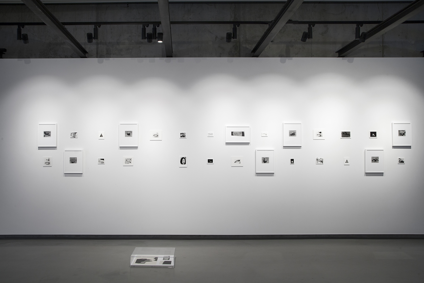 Deanna Pizzitelli, New Generation Photography Award, Exhibition at On Site Gallery, May - June 2018. Photo by Yuula Benivolski