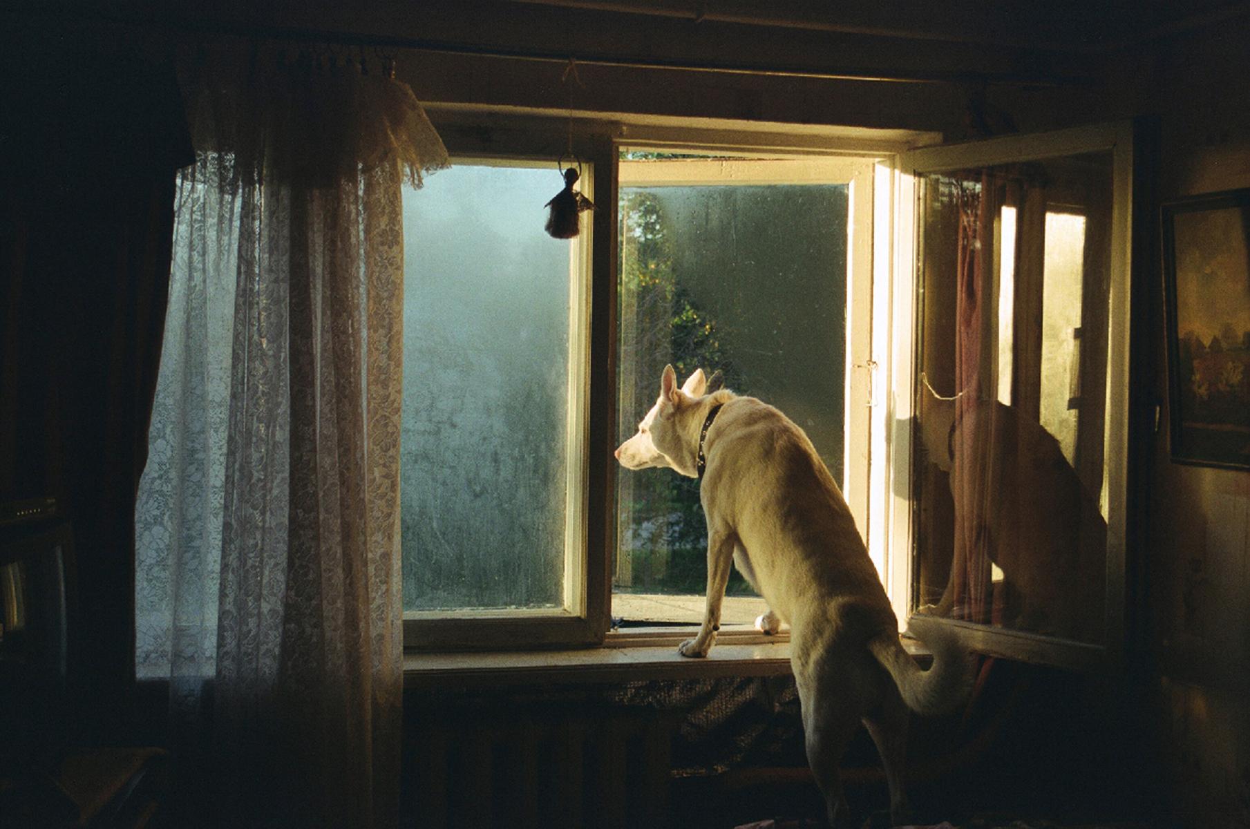"Katrina Kepule, Untitled from ""Sit Silently"", 2012"