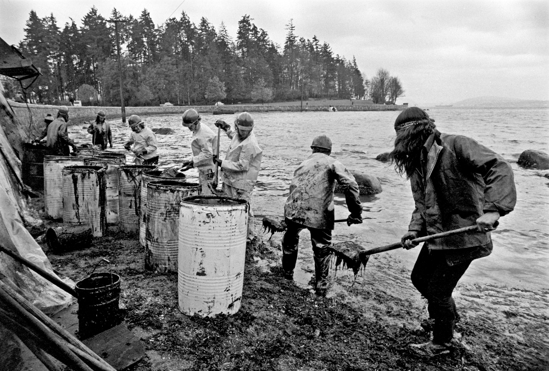 John Denniston, Improvised oil-spill cleanup at Stanley Park, Vancouver, 1973