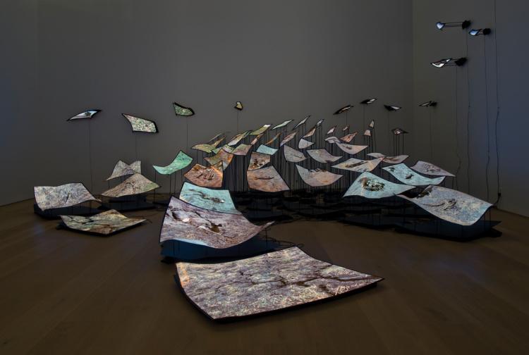 Nichola Feldman-Kiss, Installation view, Esker Foundation., 2014.