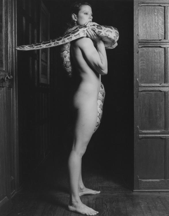 "Robert Mapplethorpe, Lisa Lyon, 1982. Gelatin silver print, 20x16"". © Robert Mapplethorpe Foundation. Used by permission."