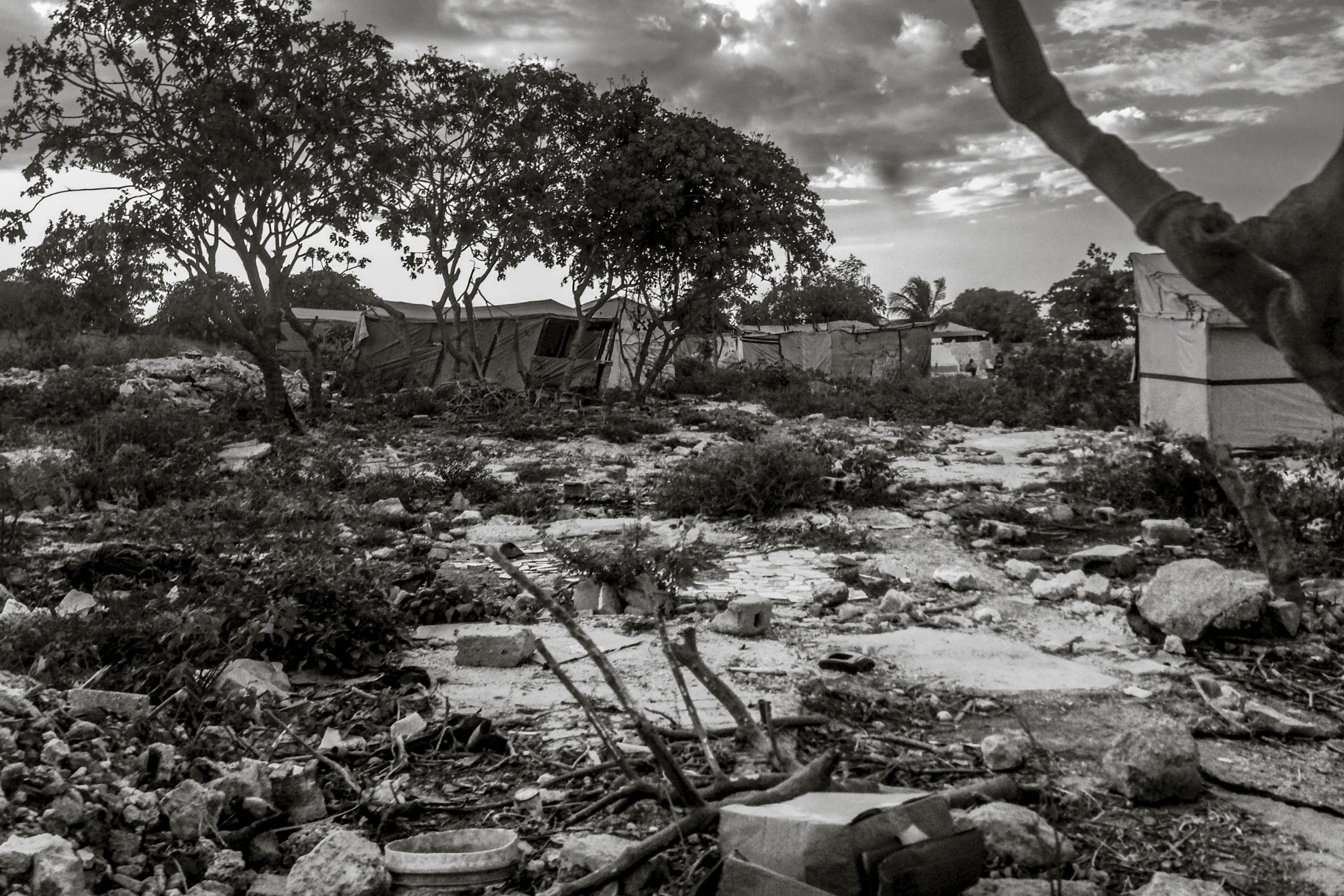 Robert DiVito, Settlement, 2013