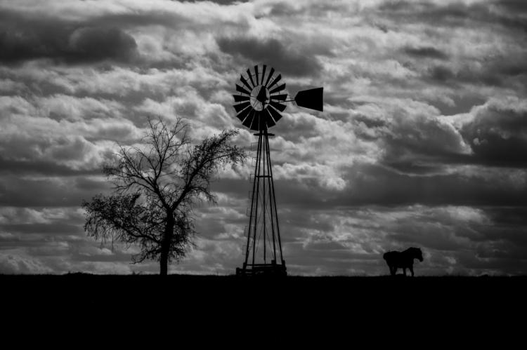 Phil Desjardins, Cheyenne Autumn, 2016