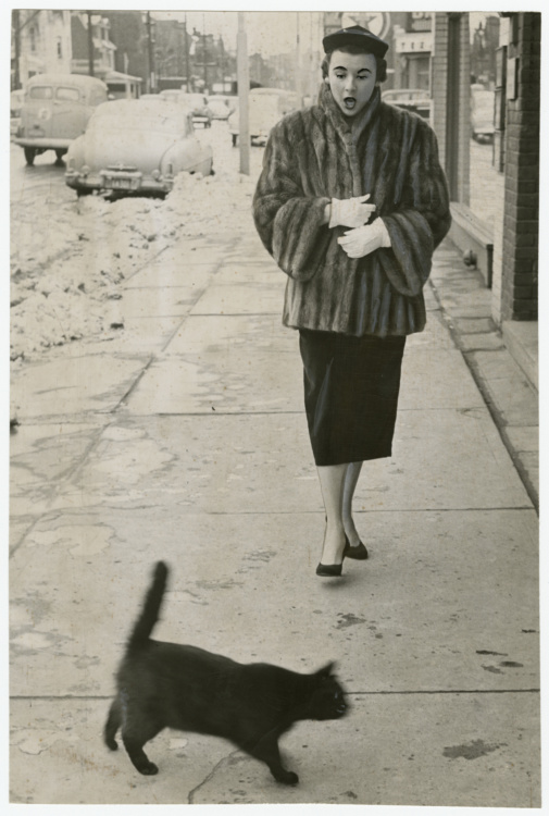 """Unidentified photographer, To have a black cat cross your path at any time is unfortunate, but on Friday the 13th – oh, my! – which is just what Jean Craig said, 1953. Gelatin silver print, 9 x 6"""". Gift of The Globe and Mail newspaper to the Canadian Photography Institute of the National Gallery of Canada."""