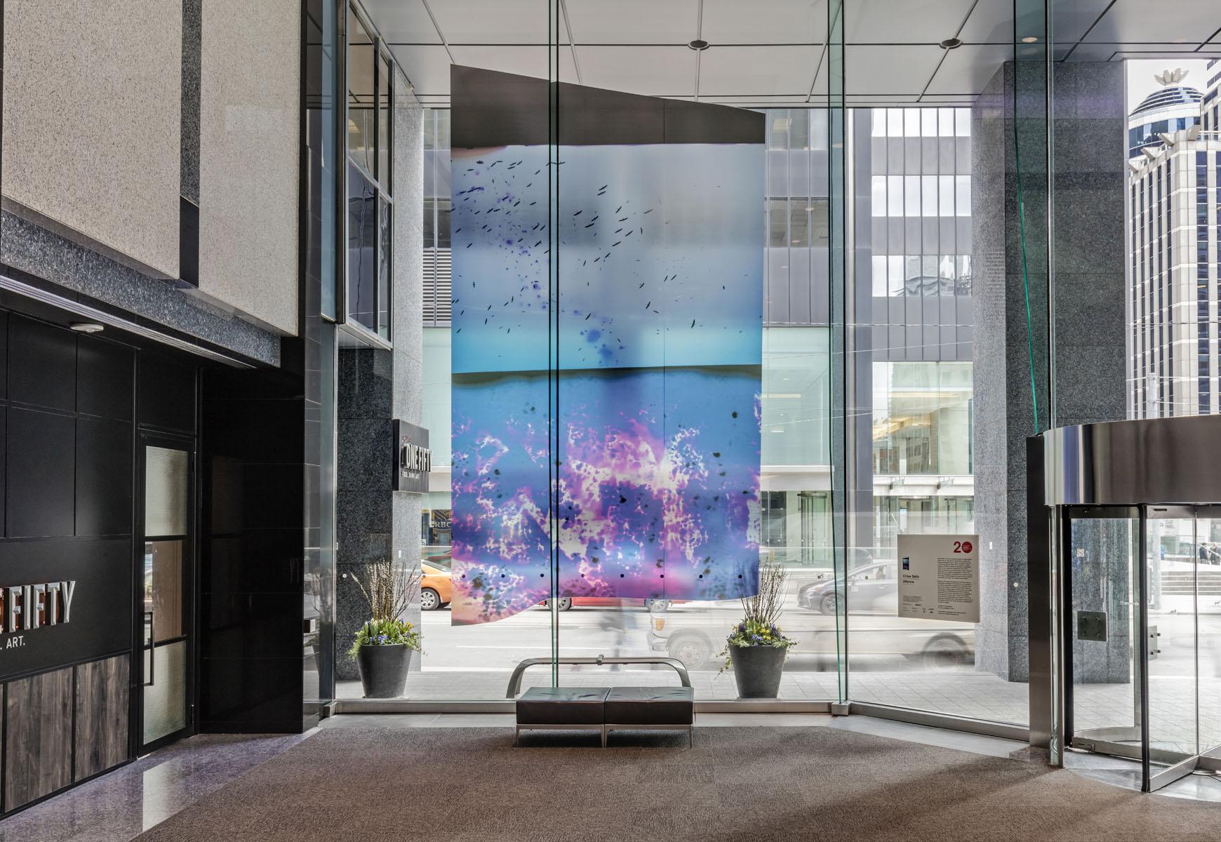 Installation view of Chloe Sells, Alliance, Photo: Toni Hafkenscheid