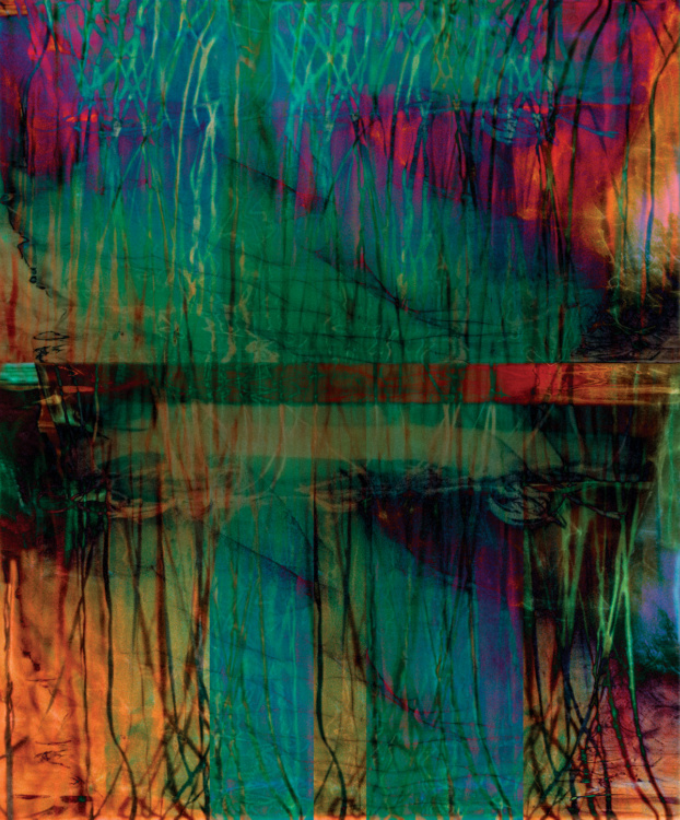 "Joan Kaufman, Root Series 2.2, 2015. Archival pigment print, 44 x 36""."