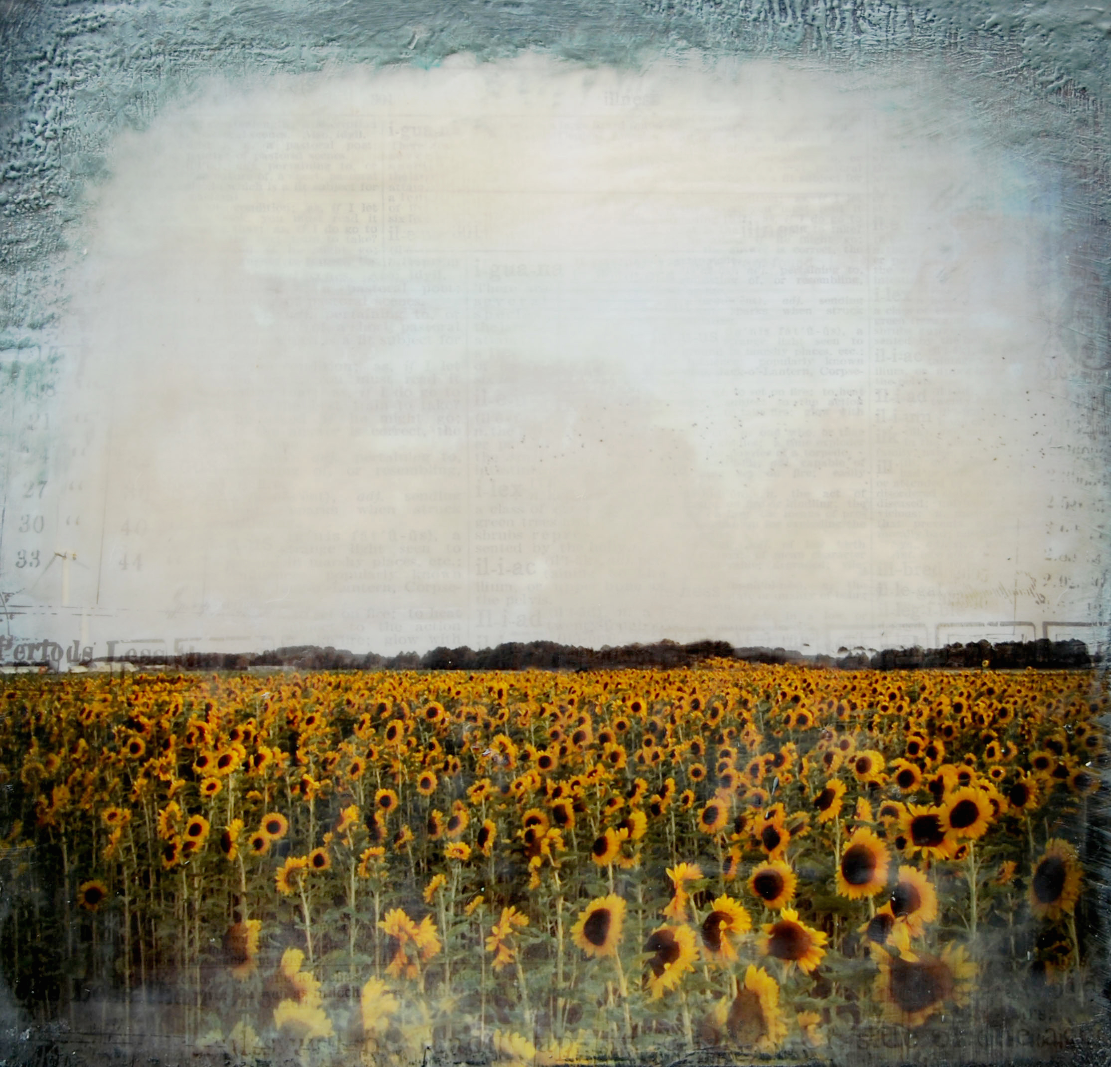 Joya Paul, Sunflowers, 2011