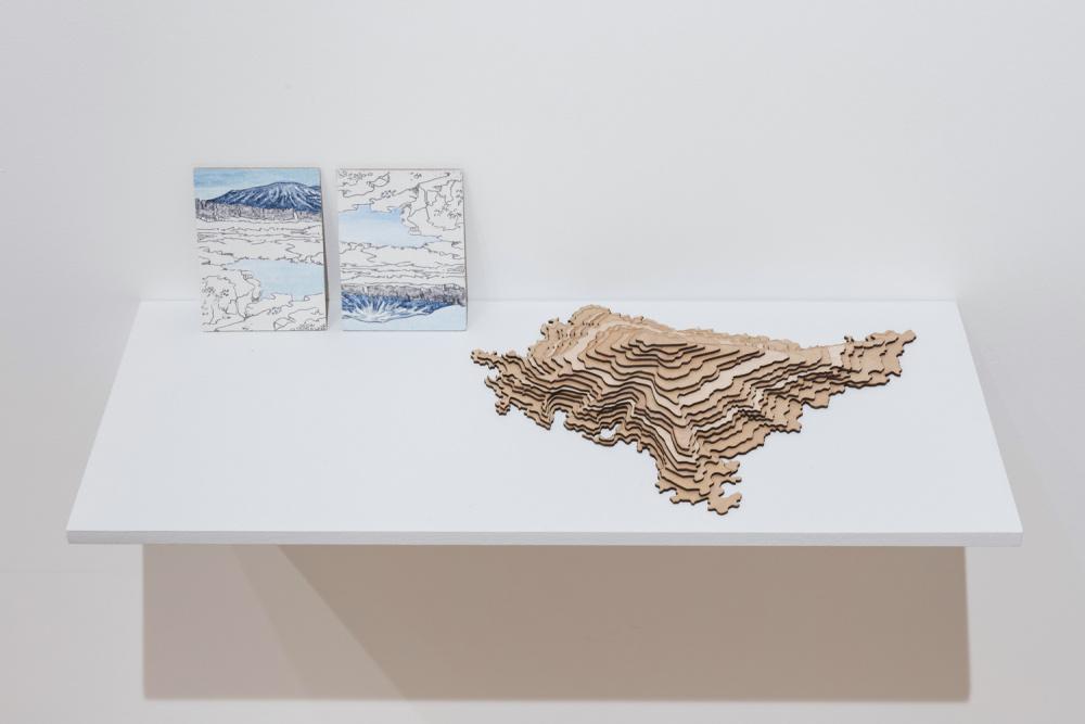 Installation view of Josée Pedneault, Nævus, Photo: Toni Hafkensheid
