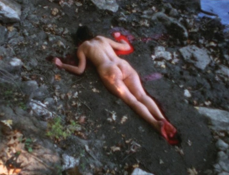 Ana Mendieta, Silueta Sangrienta, Super-8mm transferred to high definition digital media, colour, silent. Image and artworks courtesy of the Estate of Ana Mendieta Collection, LLC and Galerie Lelong, New York.