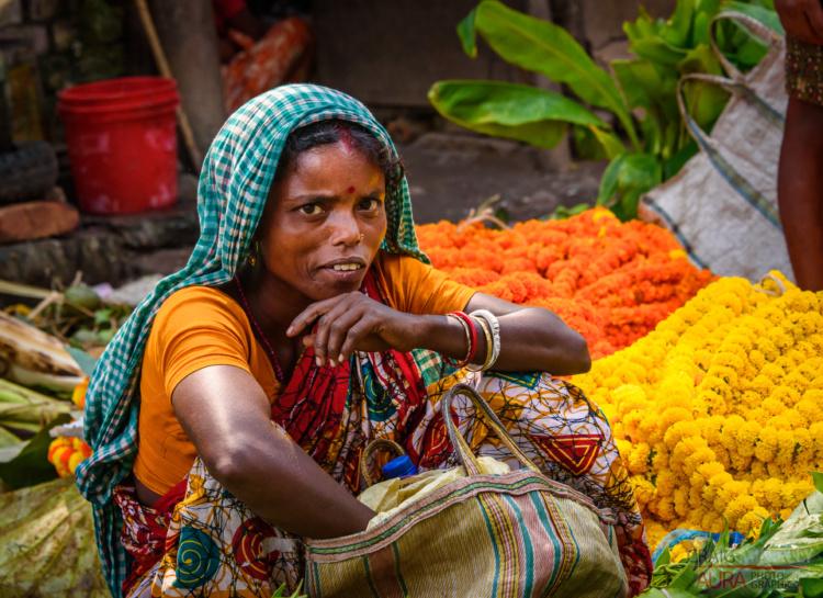Craig Minielly, India