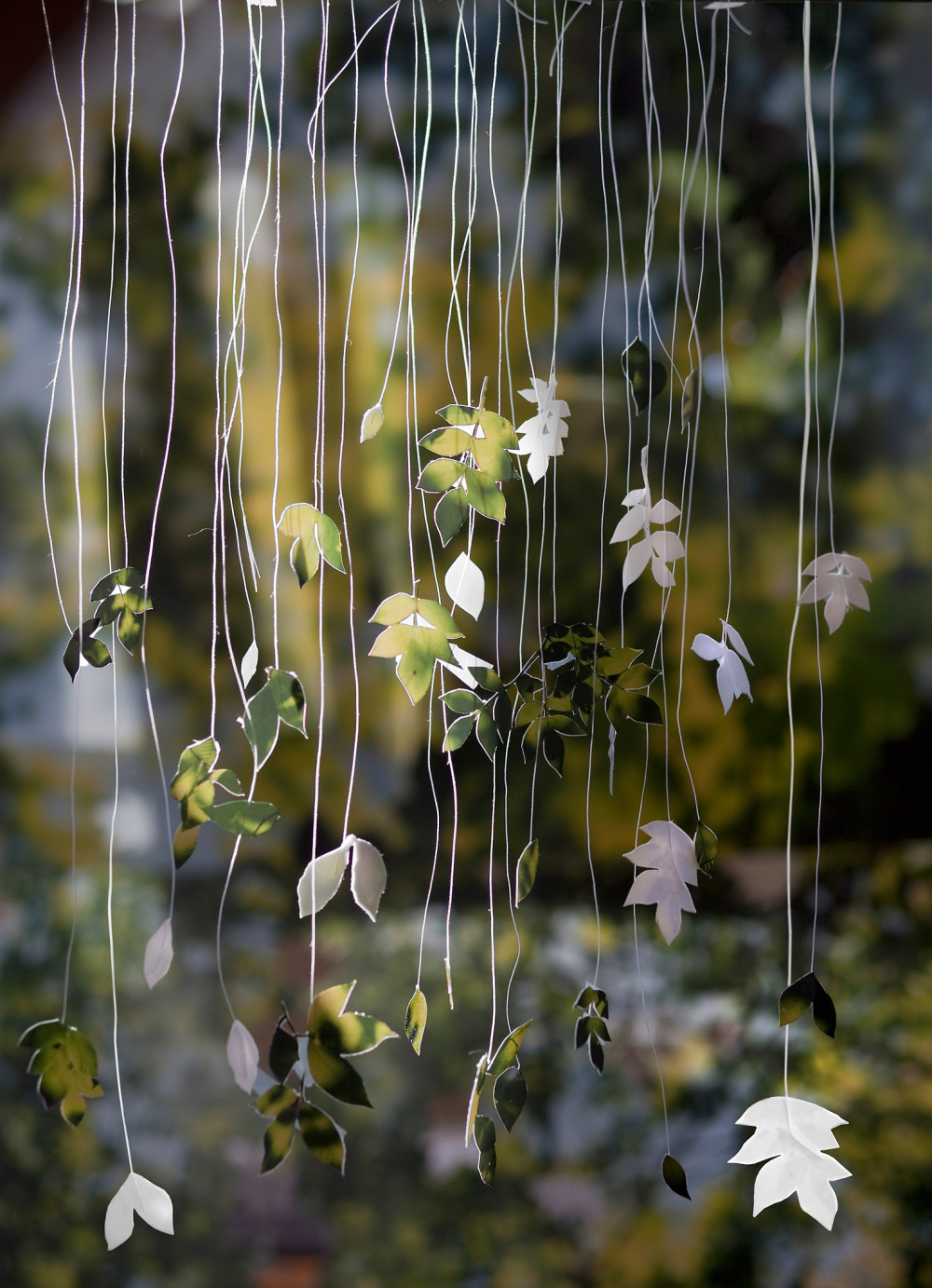 Becky Comber, Loose Leaves, from the series Broken Horizons, 2014