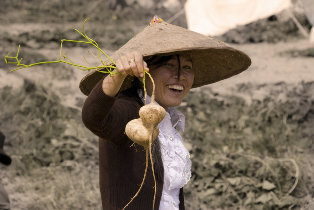 J.P. Gural, Pulled by the Roots in Laos, 2012