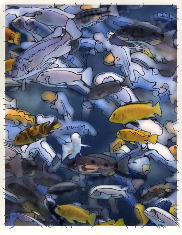 Caley Taylor, Fishies, 2006, Photo Drawings,  10 x 13