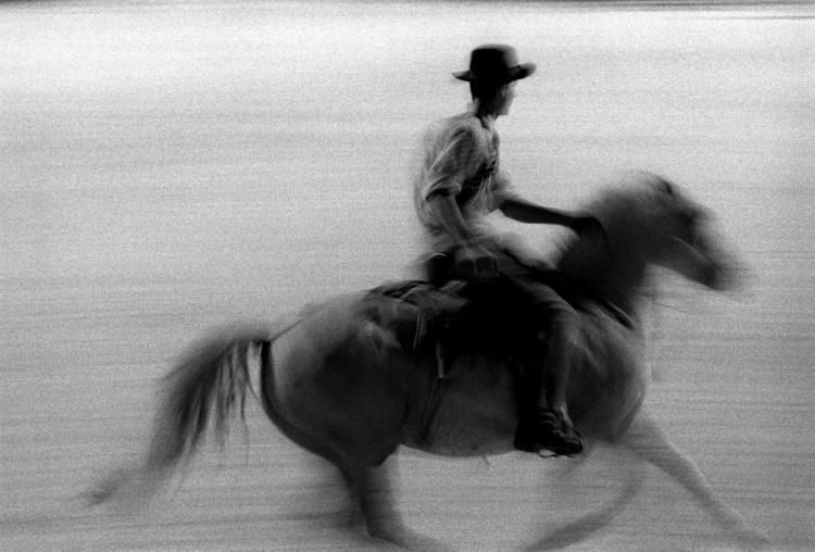 Fabrice Strippoli//KlixPix//FirstLight, Camargue Horses, 11x14