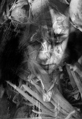 Stefania Aloise, Tear, 2005, 32X26