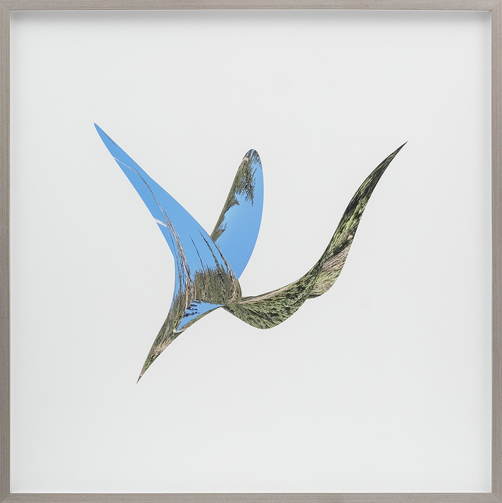 """Tracy McMenemy, Soar, 2019. Archival pigment print on paper, 36 x 36"""", edition of 10"""