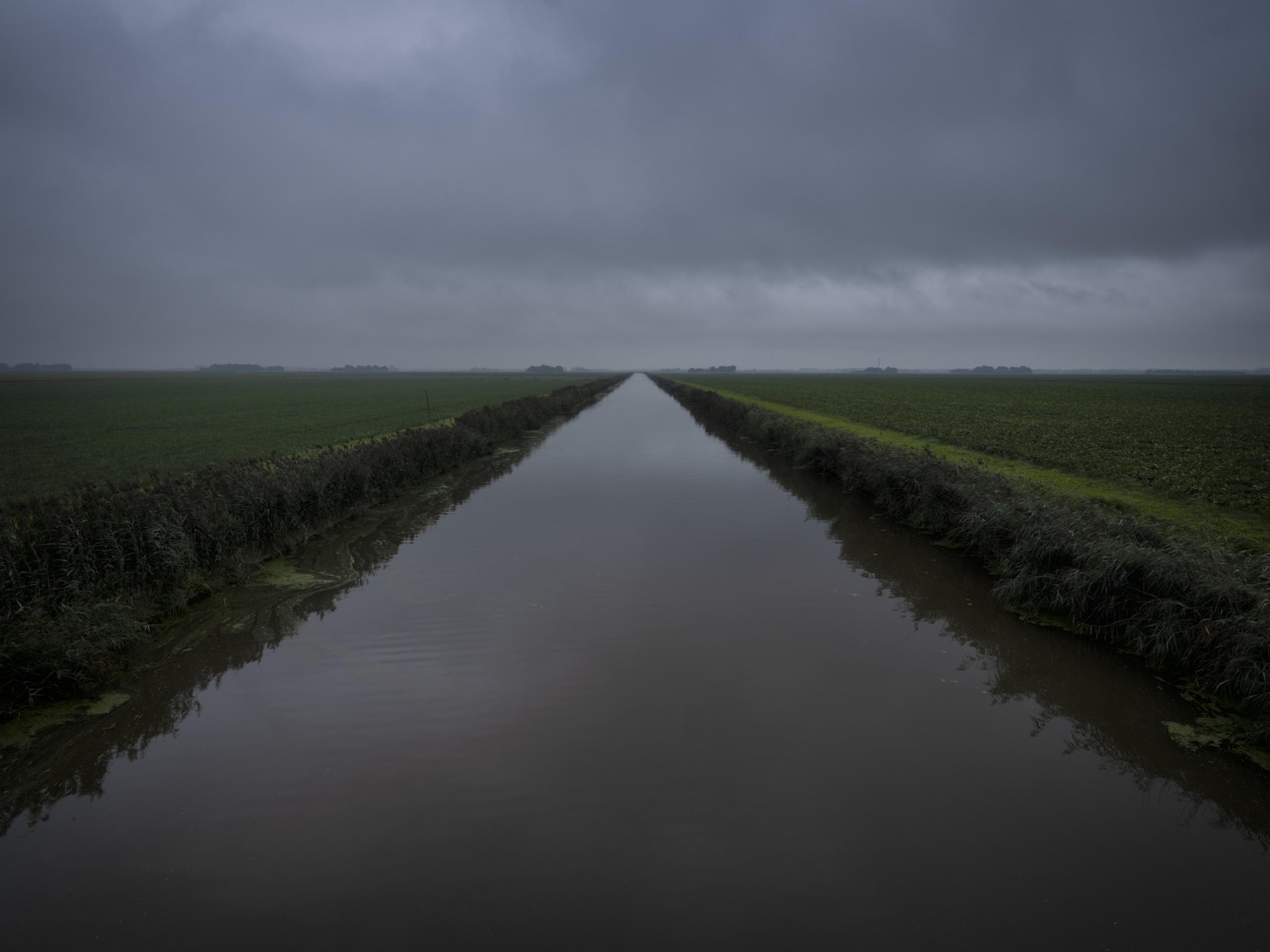 Jason van Bruggen, Farm Fields, Flevoland Polder, 2020