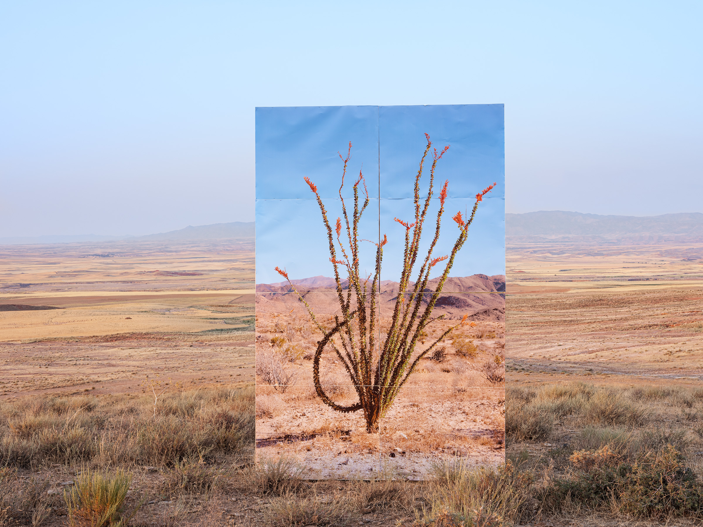 Gohar Dashti, Untitled 10, from the series Land/s, 2019. Courtesy of the artist