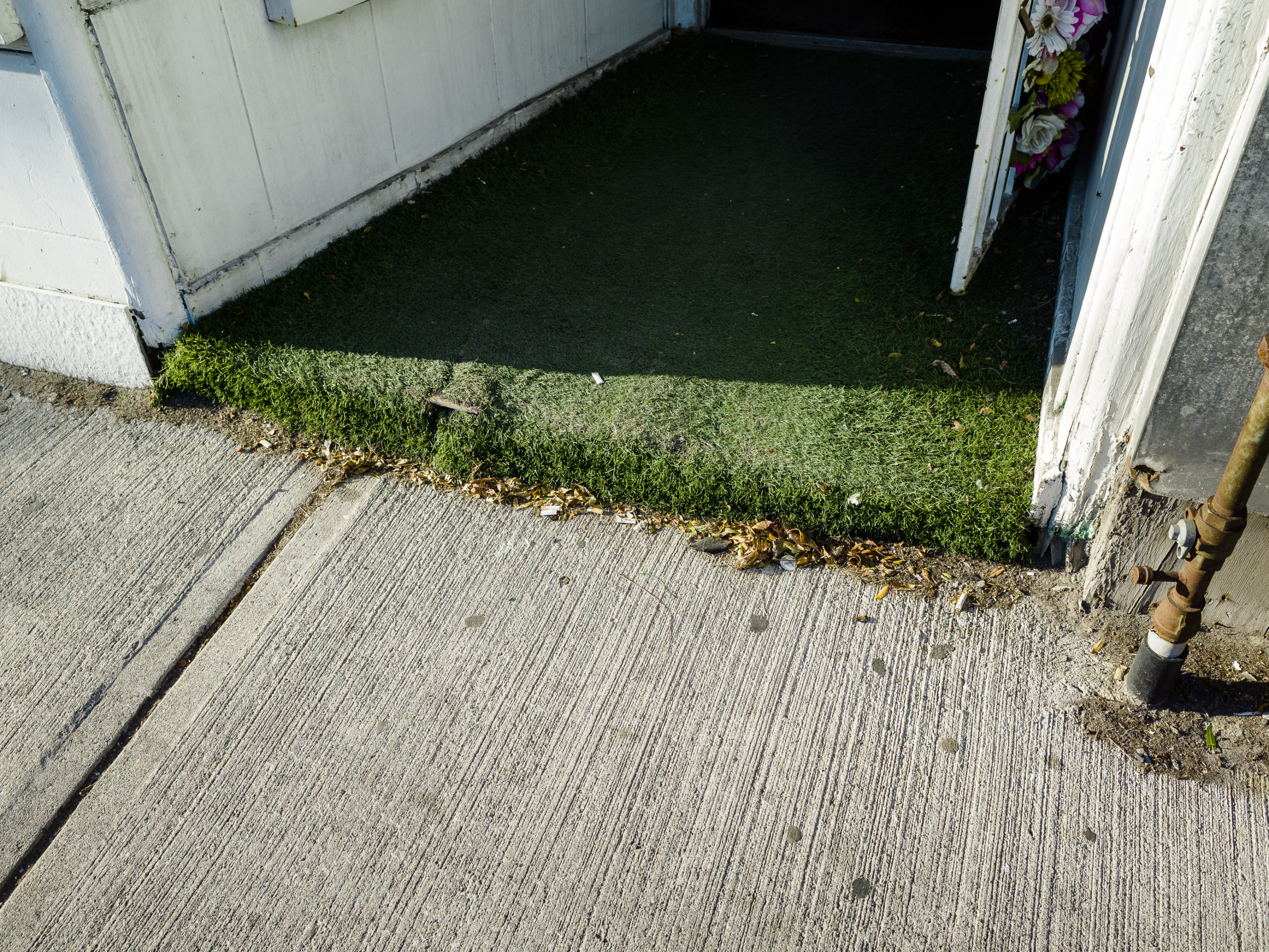 Atanas Bozdarov and Craig Rodmore, Every Step on Queen Street West (artificial grass, artificial flowers on door), 2020