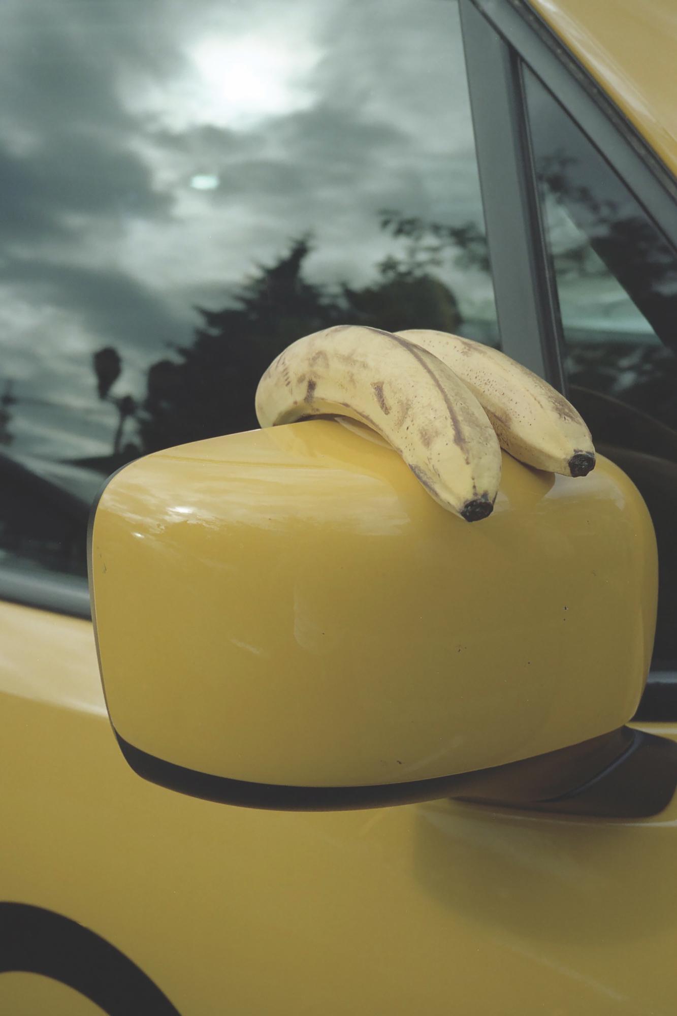 Tom Hsu, Two Bananas, 2018. Courtesy of the artist