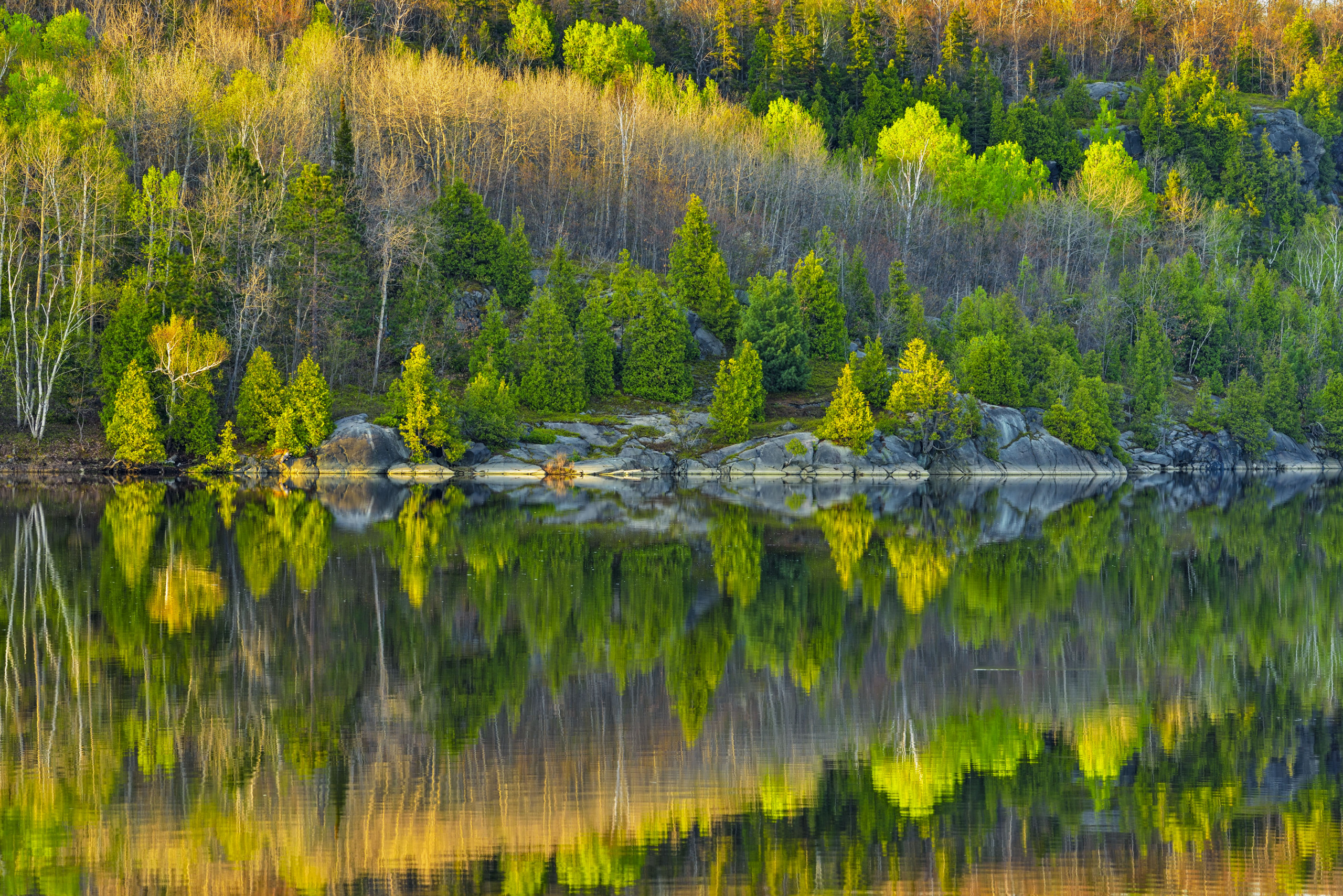 © Don Johnston, Spring Reflections in Simon Lake, 2019, Sudbury, Ontario