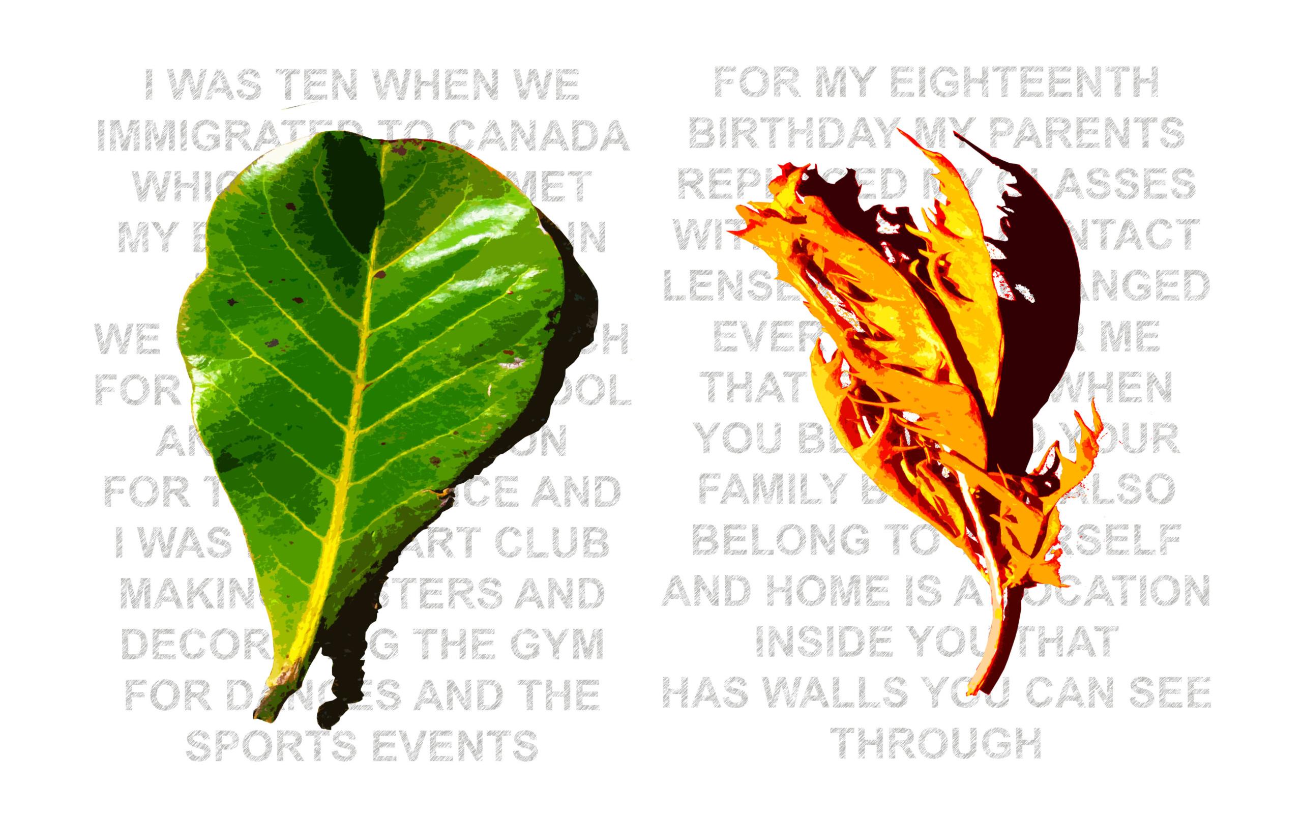 Alexandra Haeseker, Fallen Leaves, 2020