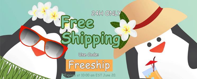 Free Shipping 24H