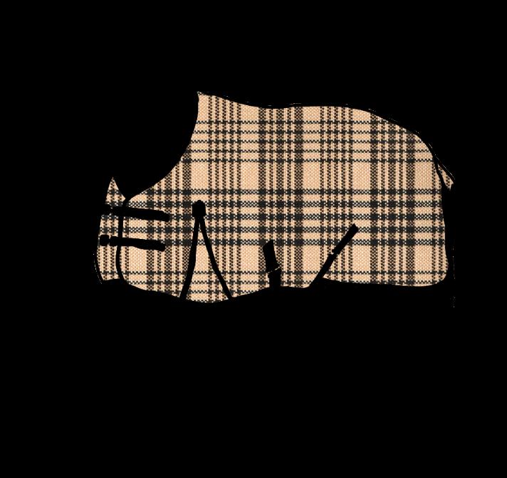Blanket Boss logo