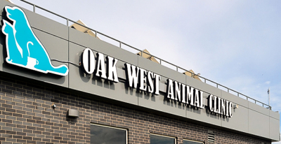 London-based Veterinary Clinic, Oak West, has multiple practices insured by McConville Omni