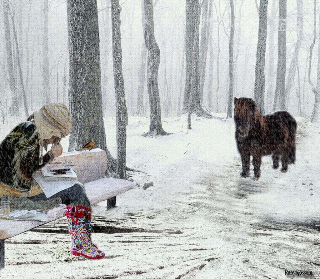 a snowy scene with a girl sitting and reading and pony approaching her