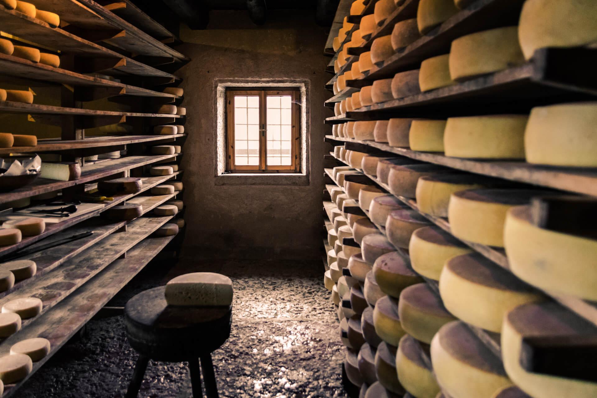 L'art de la fabrication du fromage en 5 étapes