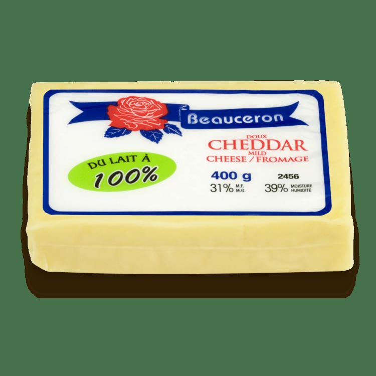 Cheddar Beauceron
